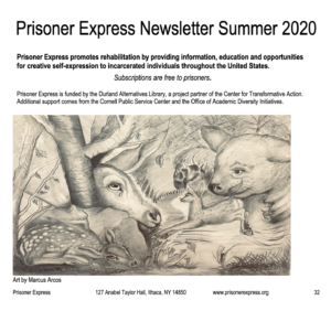 2020-summer PE newsletter feature image